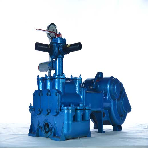 BW450 Horizontal Three Cylinder Reciprocating Double Acting Piston Pump